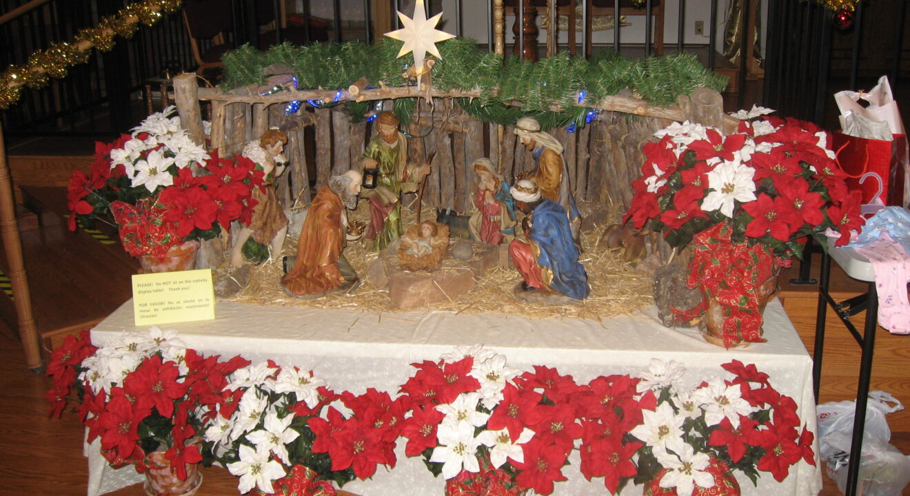 Reflections on the Christmas Story in the Bible